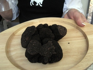Actually, a truffle kinda looks like a turd. Photo by dabblelicious / CC 2.0